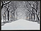 Central Park in Winter Posters by Rudy Sulgan