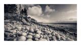 Otter Cliff Coastline Giclee Print by Michael Hudson