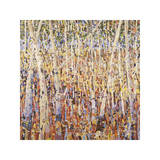 Birch Forest Giclee Print by Jean Cauthen