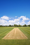 Cricket Field Background Photographic Print by  NMint
