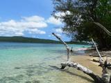 Vanuatu Beach Fotografisk tryk af Michael Harrison