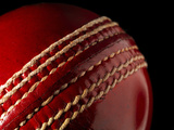 Cricket Ball Photographic Print by  stuartbur