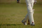 English Cricket Photographic Print by Michael Flippo