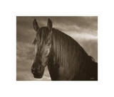 Rio Mi Amor Giclee Print by Barry Hart