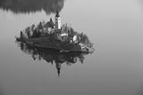 Lake Bled. Fotografisk trykk av  rudi1976