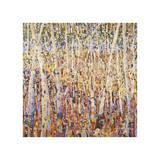 Birch Forest Giclee Print by Jean Cauthen