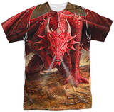Anne Stokes - Dragon's Lair Shirts