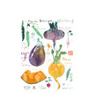Spring Botanical Plate Giclee Print by Lucile Prache