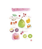 Spring Fruit Giclee Print by Lucile Prache