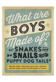 Boys Are Made Of Prints by  Anderson Design Group