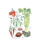 Vegetable Poster Giclee Print by Lucile Prache