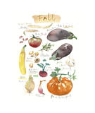 Fall Vegetables Giclee Print by Lucile Prache