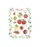 Tomatoes Giclee Print by Lucile Prache