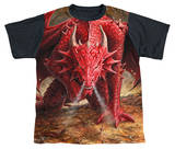 Youth: Anne Stokes - Dragon's Lair Black Back T-shirts