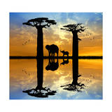Baobab and Elephant at Sunset Premium Giclee Print by  adrenalinapura
