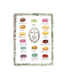 French Macaron Flavor Chart Giclee Print by Lucile Prache