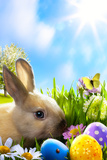 Art Little Easter Bunny and Easter Eggs on Green Grass Papier Photo par  Konstiantyn
