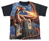 Youth: Anne Stokes - Dragon's Fury Black Back Shirts