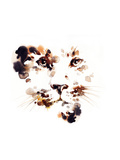 Leopard .Watercolor Illustration Print by Anna Ismagilova