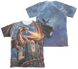 Anne Stokes - Dragon's Fury (Front - Back Print) Shirt