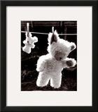 Teddy Bear Drying Posters by U. Dresing