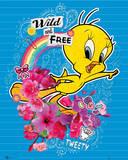 Tweety Pie - Wild & Free Plakat