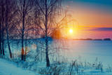 Beautiful Winter Sunset over Snowy Field Photographic Print by  vvvita