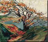 Arbre en automne Reproduction sur toile tendue par Emily Carr