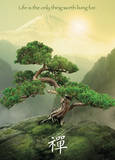 Zen - Mountain Plakater