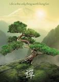 Zen - Mountain Plakaty