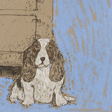 Boho Dogs V Prints by Clare Ormerod