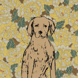 Boho Dogs III Prints by Clare Ormerod