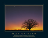 Reach For the Sky Posters by Adam Brock