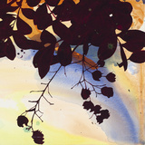 Laced Straw Well - Detail II Giclee Print by Jackie Battenfield