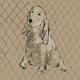 Boho Dogs II Print by Clare Ormerod