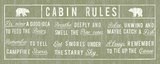 Cabin Rules Panel Posters av  The Vintage Collection