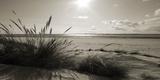 Rolling Dunes I Giclée-Druck von Ben James