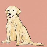 Boho Dogs IV Prints by Clare Ormerod