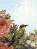 Birds and Ornaments IV Prints by Clara Wells