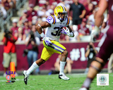 Jalen Collins LSU Tigers 2012 Action Photo