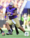 Danny Shelton University of Washington Huskies 2014 Action Photo