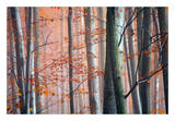 Autumn Woods Posters by Diane Romanello