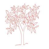 A Tangerine Tree Kunstdrucke von Jan Weiss