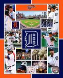 Detroit Tigers 2015 Team Composite Photo