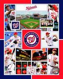 Washington Nationals 2015 Team Composite Photo