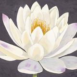 Moon Lily I Giclee Print by Kate Mawdsley