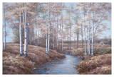 Birch Creek Prints by Diane Romanello