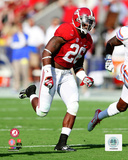 Landon Collins University of Alabama Crimson Tide 2014 Action Photo