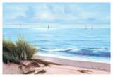 Sandpiper Beach Posters by Diane Romanello