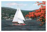 Sail Away Prints by Diane Romanello